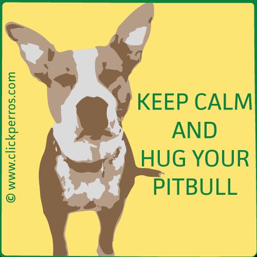 Nombre de perros pitbull, macho, hembra, keep calm