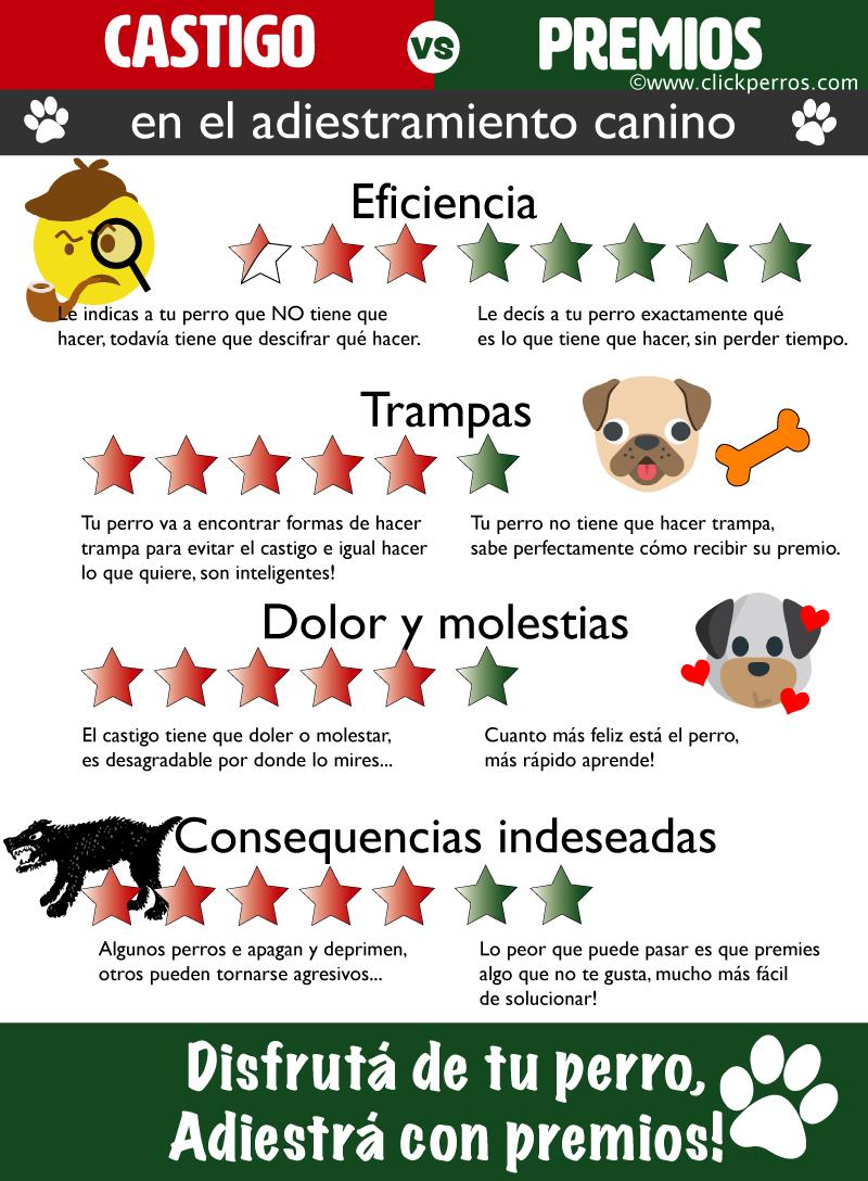 Curso de adiestrador canino positivos, como ser adiestrador canino positivo, que hay que estudiar para ser adiestrador canino, desventajas del uso de castigo en el adiestramiento canino