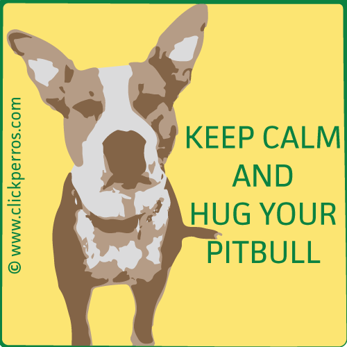 Nombres Para Perros Pitbull únicos Y Originales