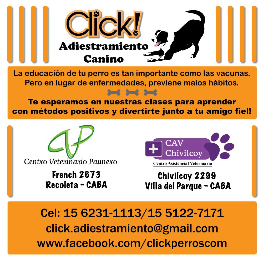 adiestramiento canino en capital federal CABA Argentina