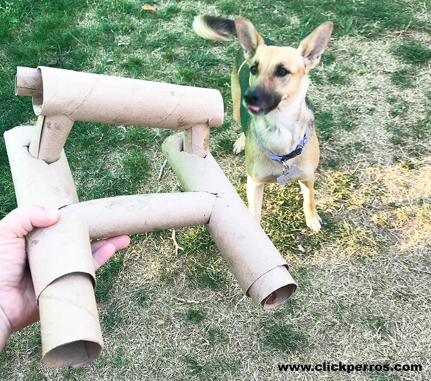 juguetes interactivos caseros para perros, juguetes de inteligencia para perros caseros, juguetes para perros, juguetes para cachorros