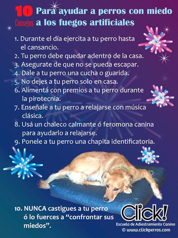 perros y pirotecnia infografico, perros y fuegos artificiales